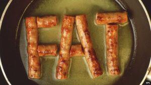 animal fat